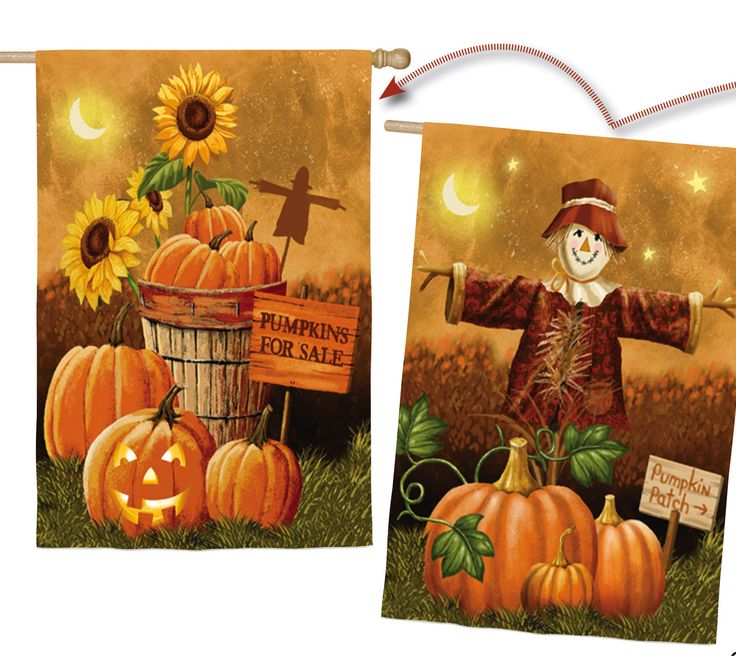 Pumpkin Patch for Sale Vertical Flag
