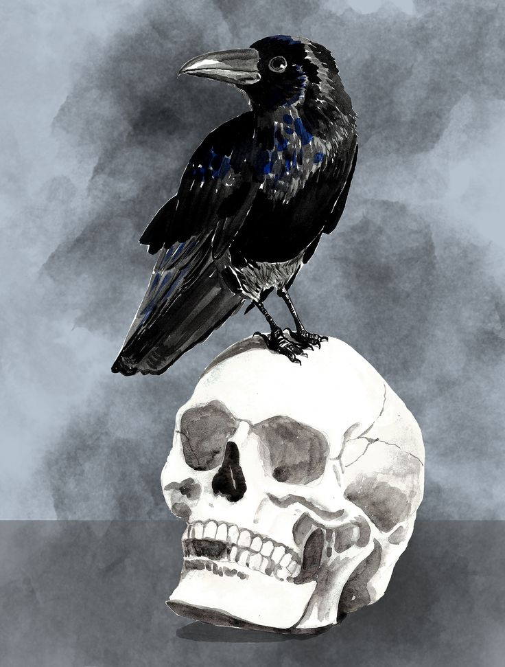 a feast for crows, game of thrones-inspired, watercolour and digital, gift for him
