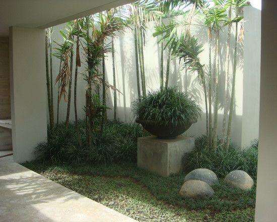 Fresh Terrace Plant Design Creating a Cool Interior Condition : Modern Landscape Indoor Garden Jimbaran Bali Indonesia Residence