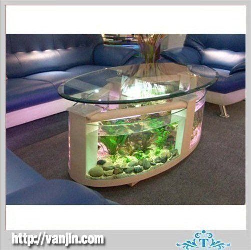 Best Home Images On Pinterest Home Animals And Aquarium Fish - Acrylic aquariumfish tank clear round coffee table with acrylic