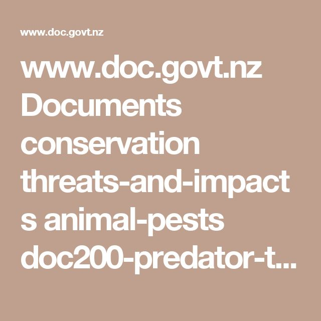 www.doc.govt.nz Documents conservation threats-and-impacts animal-pests doc200-predator-trap.pdf