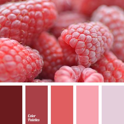 brown color, burgundy color, color combination for spring, color palette for spring, colors of spring 2016, dark pink color, gentle shades of cherry, light pink color