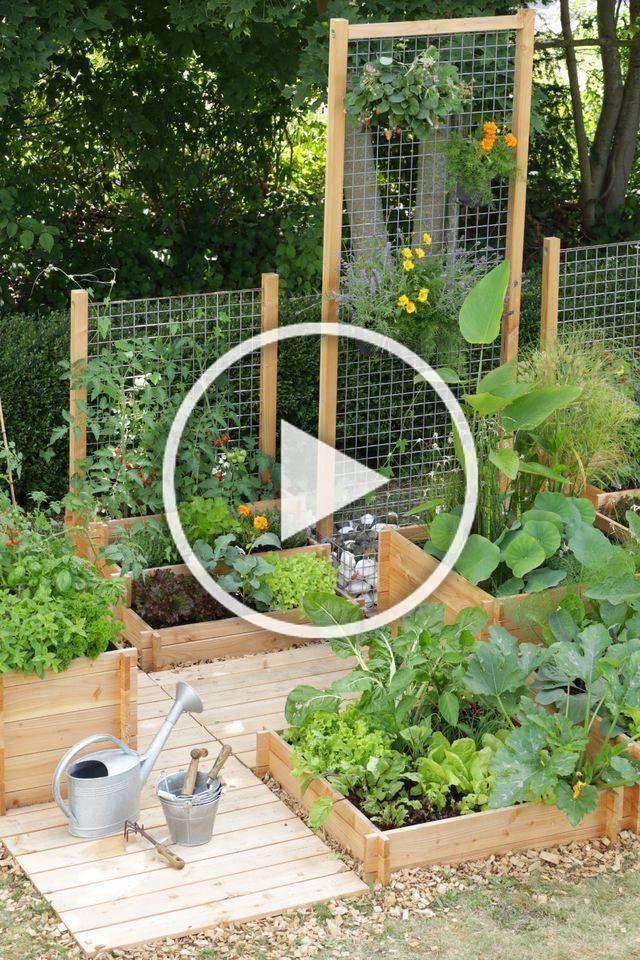vegetable patch planner #vegetable   Garden design, Garden ...