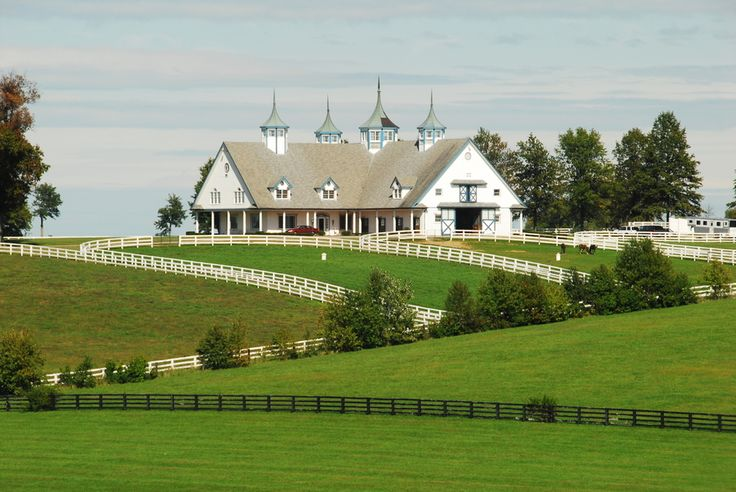 193 Best Ky Horse Farms Images On Pinterest Horse Horse