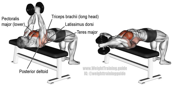 Dumbbell pullover. An isolation and push exercise. Target muscle: Sternal Pectoralis Major. Synergistic muscles: Latissimus Dorsi, Triceps Brachii, Posterior Deltoid, Teres Major, Rhomboids, Levator Scalupae, and Pectoralis Minor.