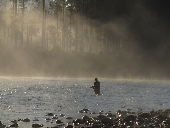 Waiting for the bite. Steelhead fly fishing Sauk River. Washington state: Sauk River, Flyfishing, Kinda Thing, Things Fly, People