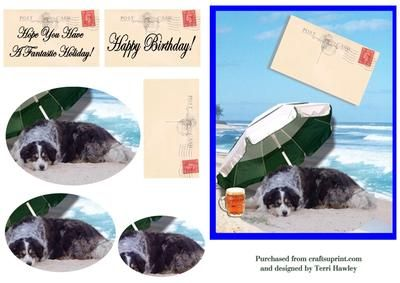 This is a birthday card that can be used for many reasons, 2 labels, Happy Birthday. and Hope you have a fantastic Holiday, and another label that is blank and is like a post card, and you can write your own message.