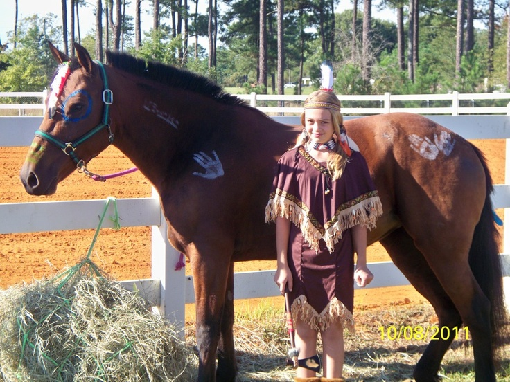 The 17 best images about do it yourself horses on pinterest horse costume indian pony solutioingenieria Gallery