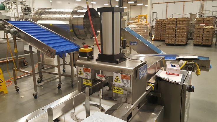 In Line Tortilla Chip Cutter + Transfer Conveyor