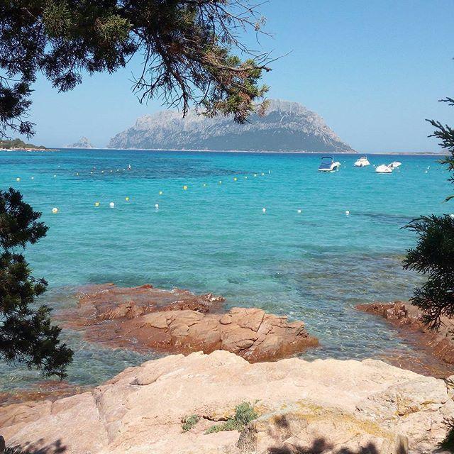 Una finestra su Tavolara  #sardegna #sardinia #portoistana #olbia #tavolara #sea #summer #colours #colorsofsummer #2016 #fantasticplace #paradise #paradisola #unionesarda #lanuovasardegna #ig_italia #ig_sardinia #sardegna_reporter #sardegna_super_pics #sardegnamare2 #volgosardegna #volgoitalia #loves_sardegna #likes_sardegna #focusardegna #igersardegna #igworldclub #igitaly #nofiltersneeded