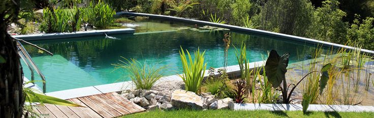 Natural Pools NZ, Eco-friendly natural swimming pools free of chlorine, naturally filtered