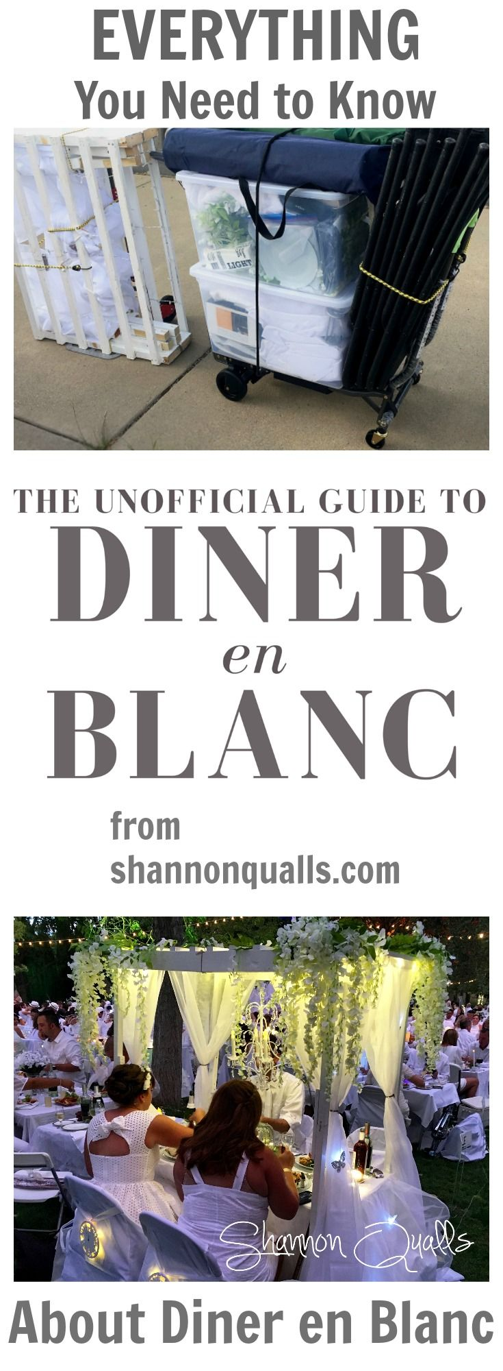 Everything You Need to Know about Diner en Blanc from shannonqualls.com