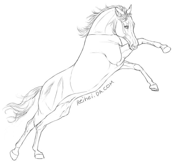 Free Horse Lineart By Reihei Deviantart Com On Deviantart