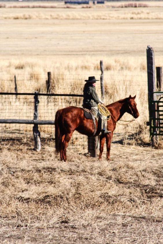 Dear Cowgirl 9/6/17 — Adrian Buckaroogirl