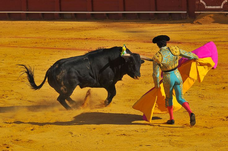 When I visited Seville the bullfight was a very special event. King Carlos and the royal family was present and the crowd was very excited.