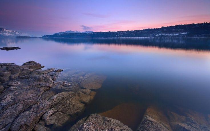 reflection : image, wall, pic 1680x1050