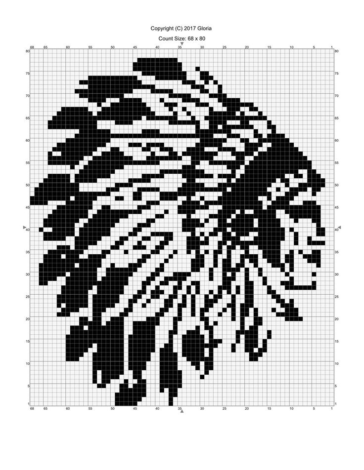 Native American cheif pattern