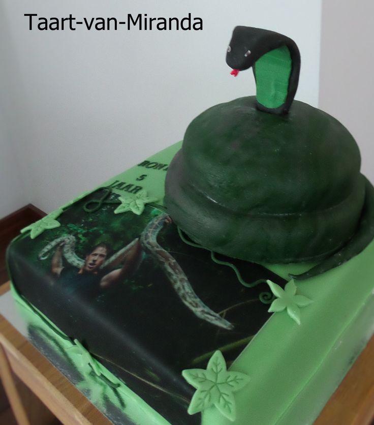 taart freek vonk - Google zoeken