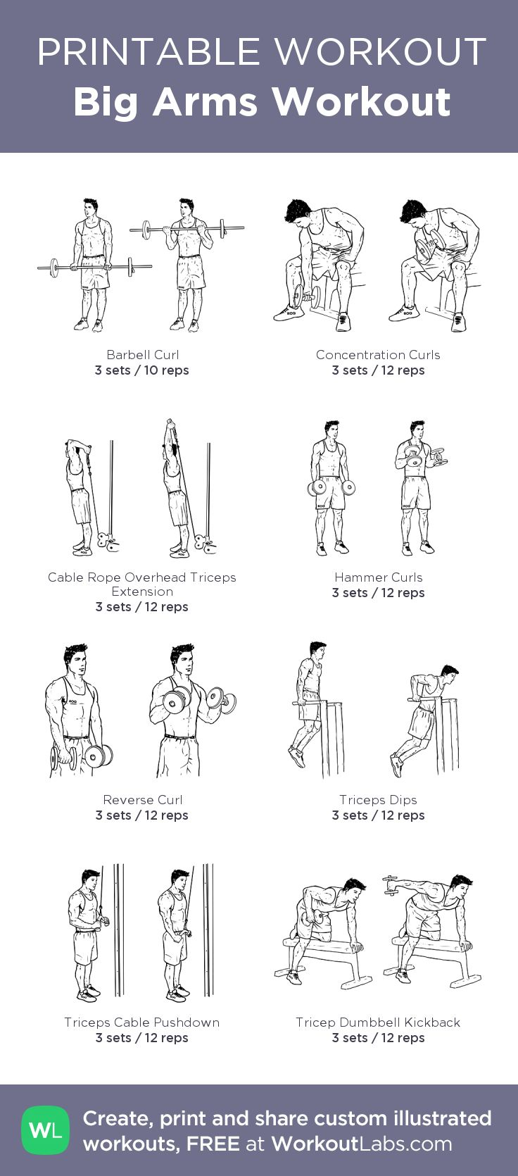 Big Arms Workout: my custom printable workout by @WorkoutLabs #workoutlabs #customworkout