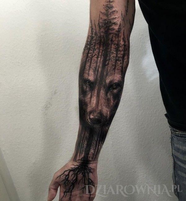 Tatuaż Niedźwiedź - realistyczne, zwierzęta, na przedramieniu, dla mężczyzn