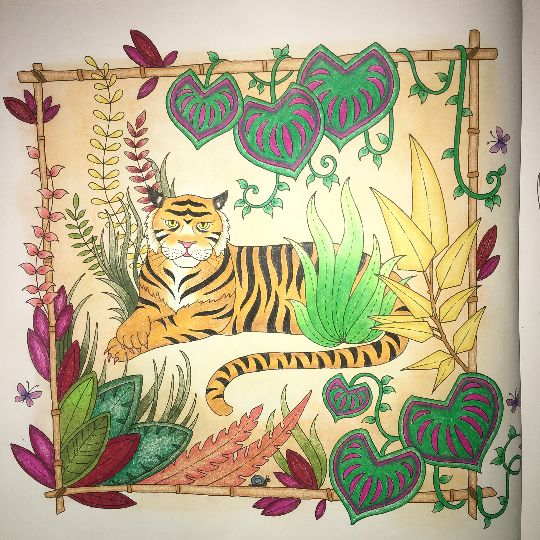 1000 Images About Magical Jungle Johanna Basford On Pinterest