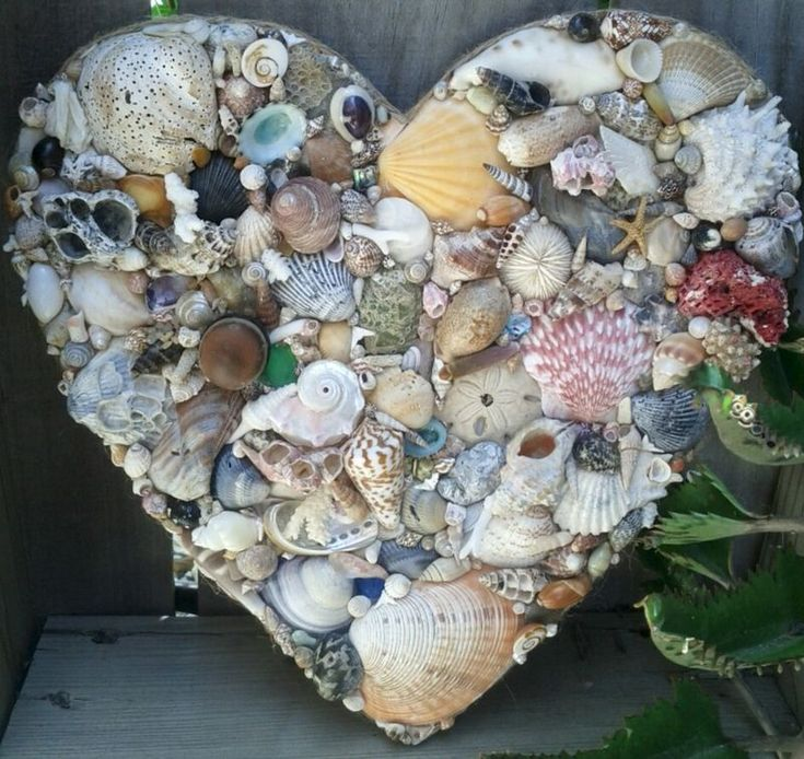 Natural Seashell Heart, Hanging Shell Decorated Heart with various Natural Colored Seashells, Bits of Coral, Barnacles, Seaglass - prod… | Beach Living | Pinte…