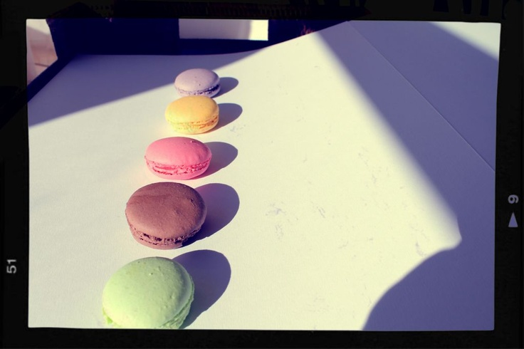 Macarons in row - framed by mymacaronrecipe.com