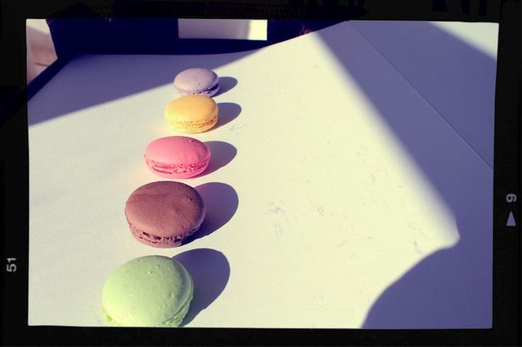 Macarons in row - framed by mymacaronrecipe.com