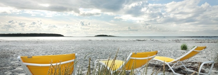 What could be better.....yellow chairs, beachfront, in maine.