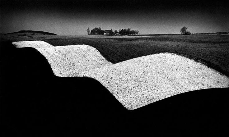 pierscinski-11.jpg (800×480)