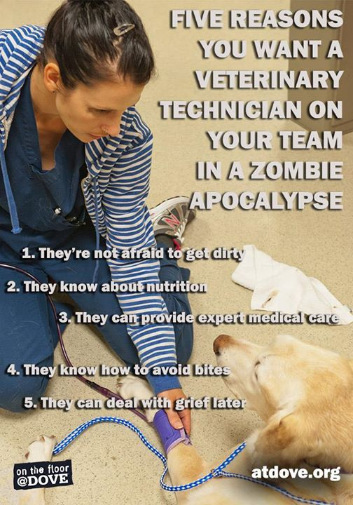 Veterinary technicians needed during a zombie apocalypse!