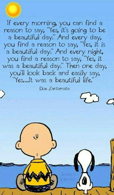 Pin by Jennifer Curran on Peanuts | Charlie Brown ...