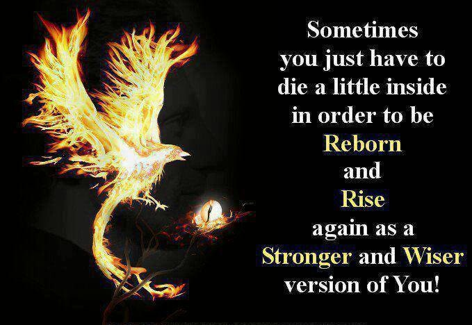 Like the Phoenix, you must spread your wings and shoot to the sun, where you will rise, prosper and survive
