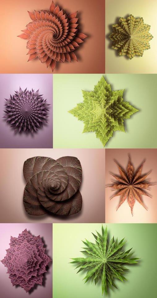 Image credit:Matt Walford Photography http://mattwalford.co.uk/fractals