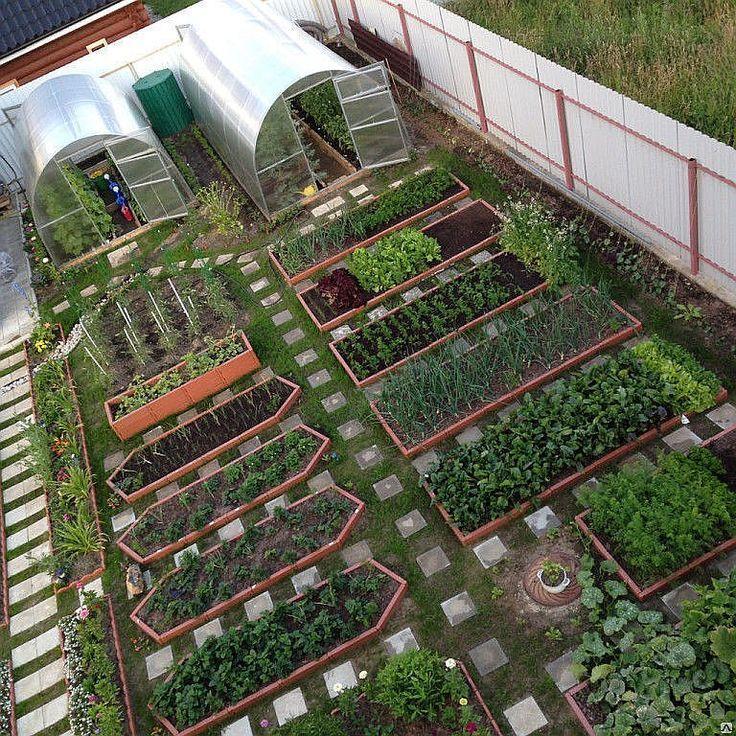 план сада и огорода фото