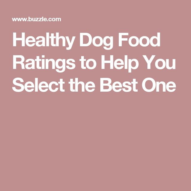 Healthy Dog Food Ratings to Help You Select the Best One
