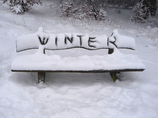Samstag, 12. Dezember - Ich träume vom Winter und Schnee repinned by www.landfrauenverband-wh.de #landfrauen #landfrauen wü-ho