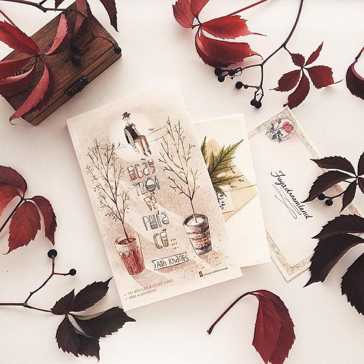 #ngaytroivephiacu #anhkhang #anhkhangsbooks