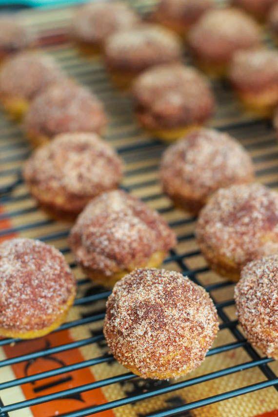 Mini Cinnamon Sugar Pumpkin MuffinsDelicious Desserts, Cinnamonsugar, Minis Cinnamon Sugar, Minis Dog Qu, Fall Minis Desserts, Pumpkin Muffins, Cinnamon Sugar Pumpkin, Minis Pumpkin Desserts, Pumpkin Minis Desserts