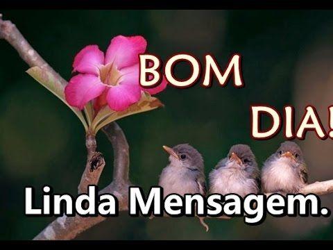Linda Mensagem de BOM DIA - O AMANHECER DE UM NOVO DIA - Vídeo de bom dia para WhatsApp - YouTube