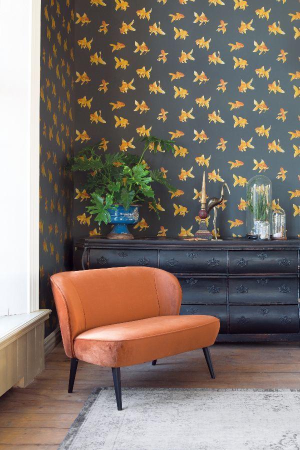 Go Bold With This Amazing Goldfish Wallpaper Design Orange Wallpaper Living Room Black Wallpaper Bedroom Goldfish Wallpaper