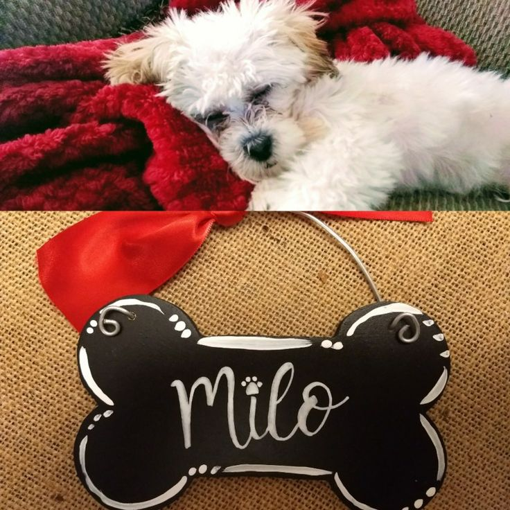 Dog Bone Christmas Ornament by My Latest Project by Liz .... You can find me on Instagram