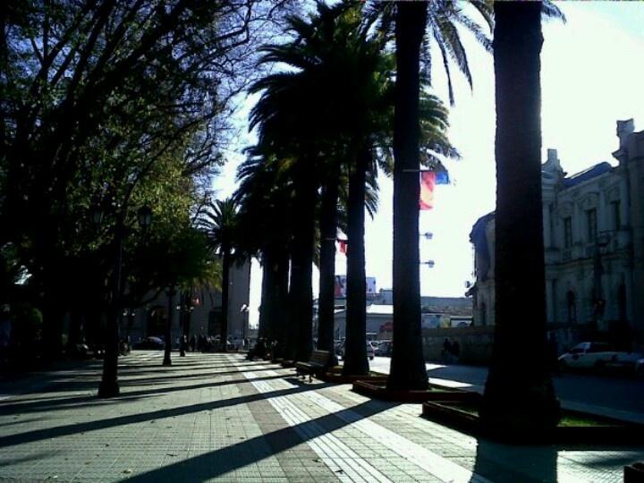 Curico , Chile