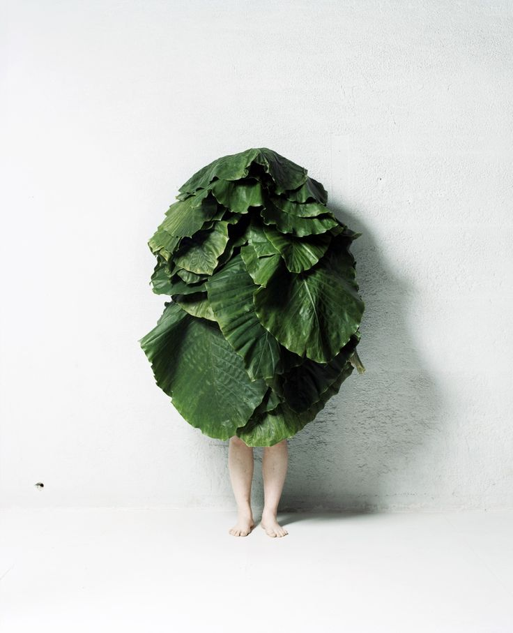 Azuma Makoto leaf man