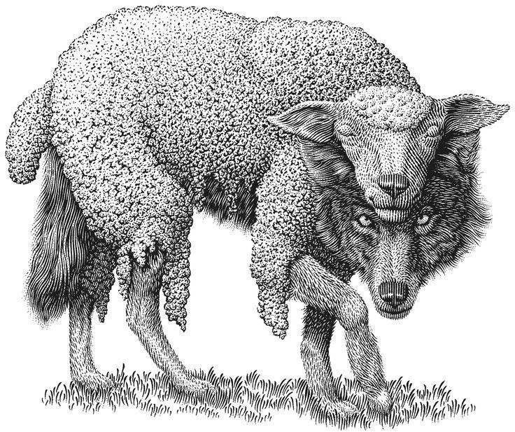 Wolf_In_Sheeps_Clothing.jpg (1907×1600)