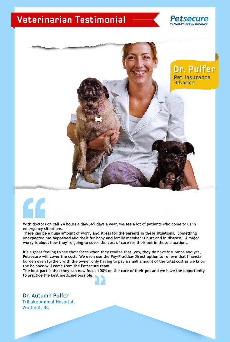 We love hearing from #veterinarians across #Canada about why they promote Petsecure to their clients. Here are some comments from a vet at Tri Lake Animal Hospital in #BC. #petinsurance