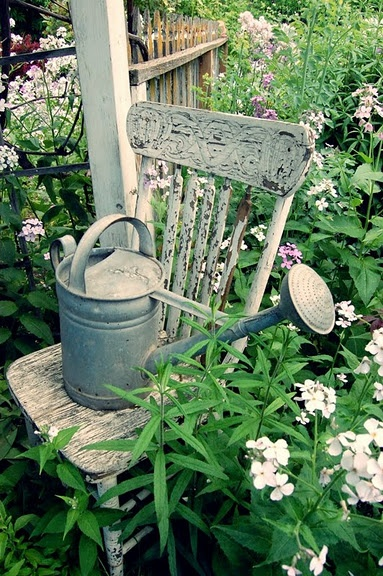 Vintage Garden...Chippy white chair with rustic watering can...surrounded by white & lavender flowers.                                              for Delores Weiss..