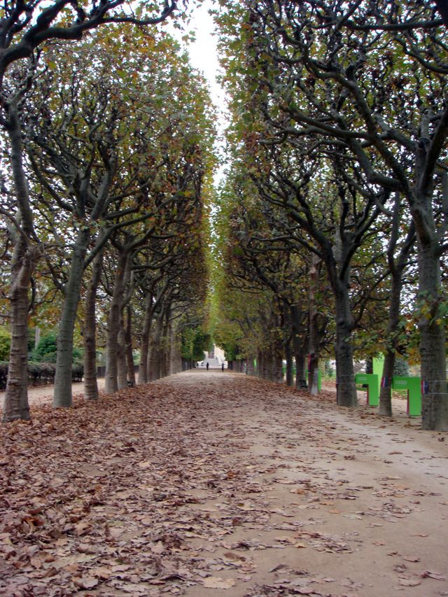 JARDIN DES PLANTES IN THE FALL