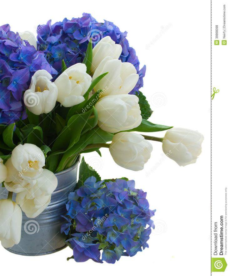 les 25 meilleures idées de la catégorie bouquet de hortensia bleu