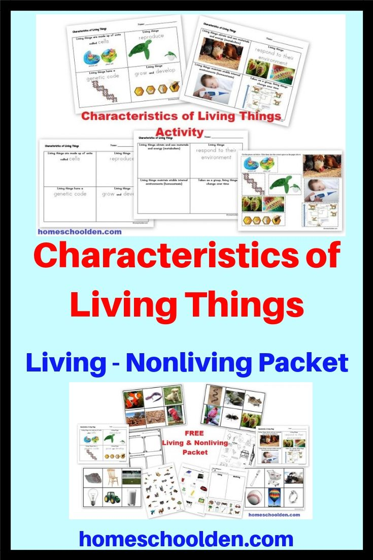 Free Characteristics Of Living Things Activity Characteristics Of Living Things Homeschool Science Curriculum Living And Nonliving [ 1102 x 735 Pixel ]